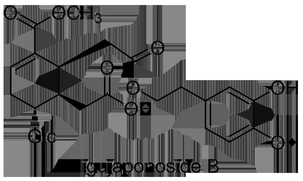 ネズミモチ 化学構造式3