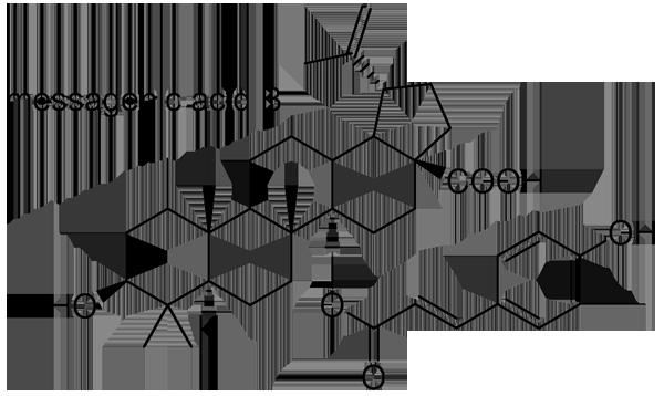 ハマナツメ 化学構造式2