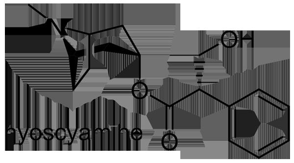 ベラドンナ 化学構造式2