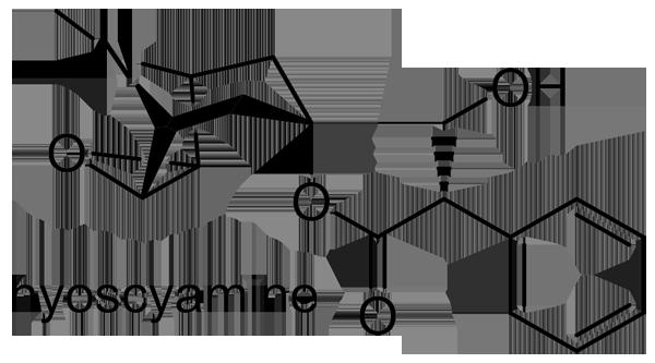 ベラドンナ 化学構造式3