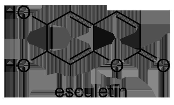 ホザキキカシグサ 化学構造式2