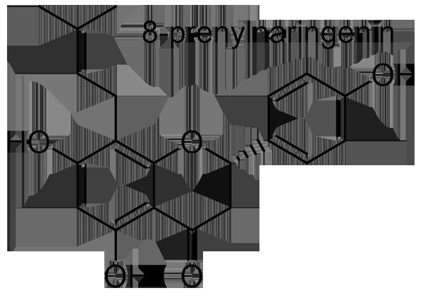 ホップ 化学構造式3