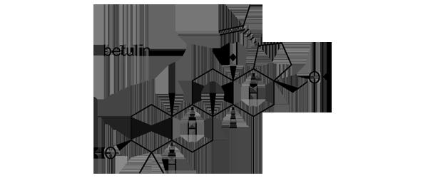 ムクゲ 化学構造式2