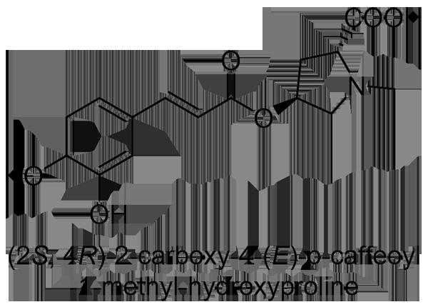 ムクノキ 化学構造式2