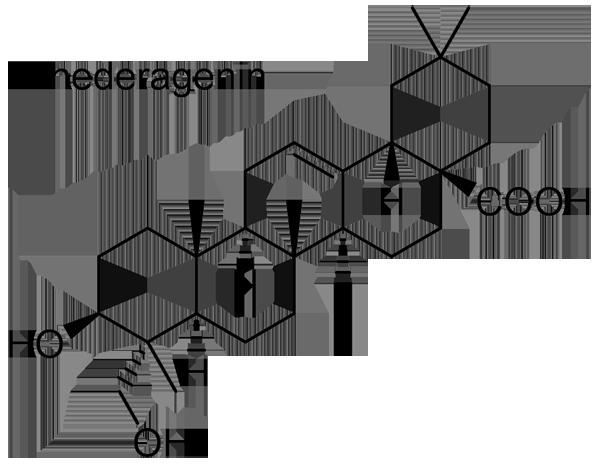 ムクロジ 化学構造式3