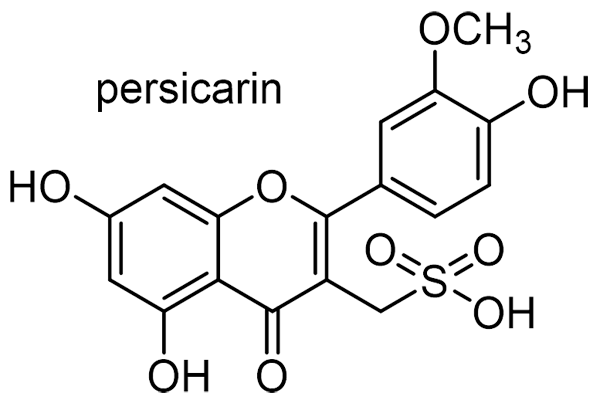 ヤナギタデ 化学構造式3