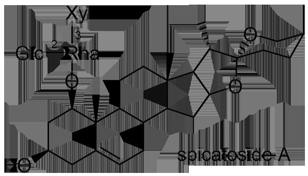 ヤブラン 化学構造式2
