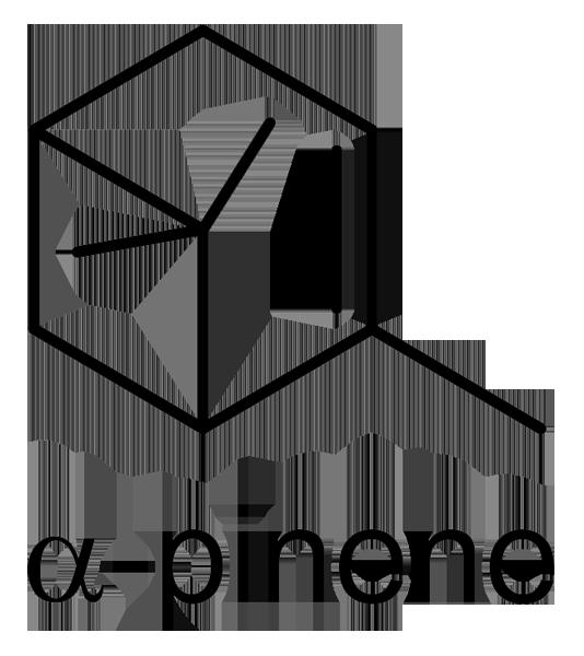 ローズマリー 化学構造式3