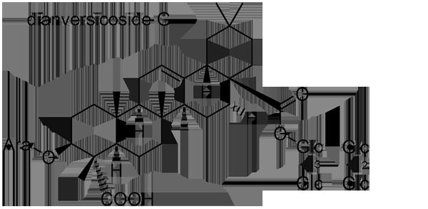 セキチク 化学構造式3