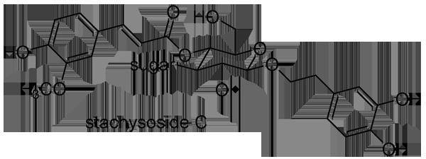チョロギ 化学構造式2