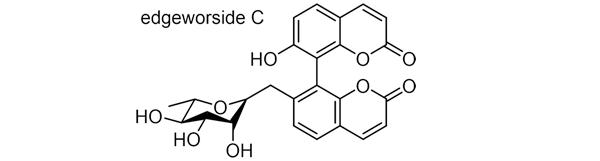 ミツマタ 化学構造式3