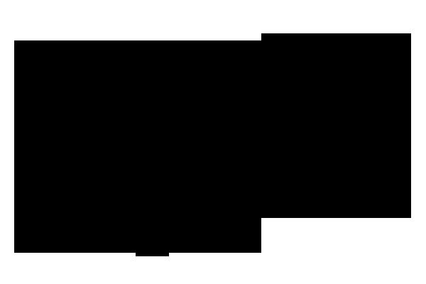 ガマズミ 化学構造式1