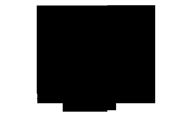 クサノオウ 化学構造式3