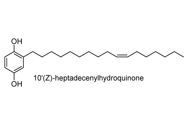 ハゼノキ 化学構造式2