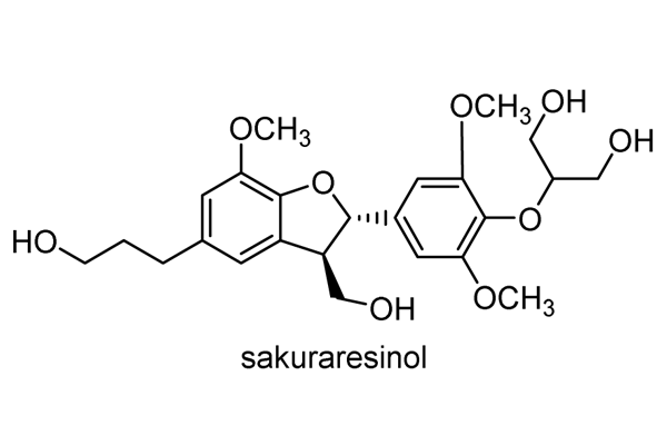 ヒサカキ 化学構造式3