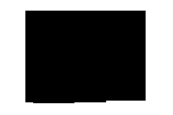 ヤツデ 化学構造式3