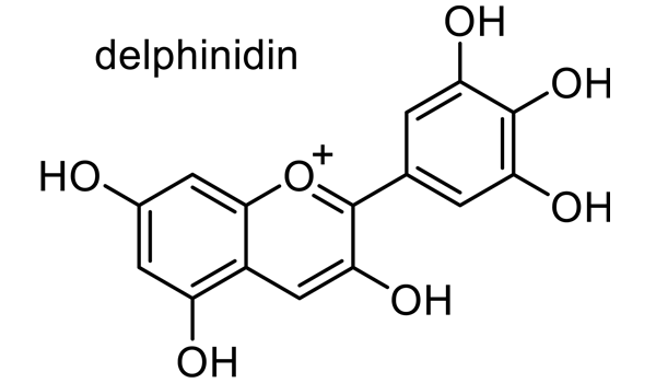 ウスベニアオイ 化学構造式2