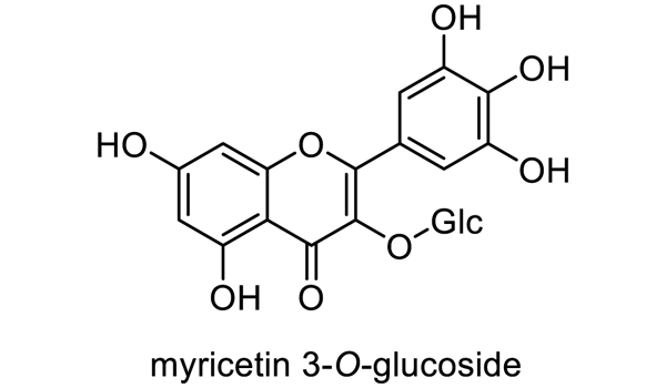 クロイゲ 化学構造式1