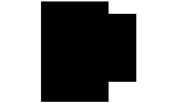 シャク 化学構造式2