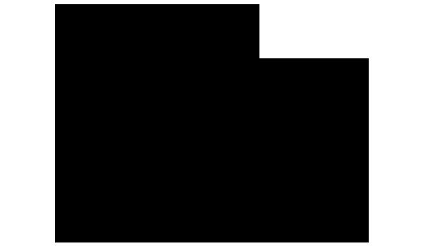 シャク 化学構造式3