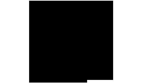 ジョウザン 化学構造式2