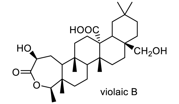 ツクシスミレ 化学構造式2