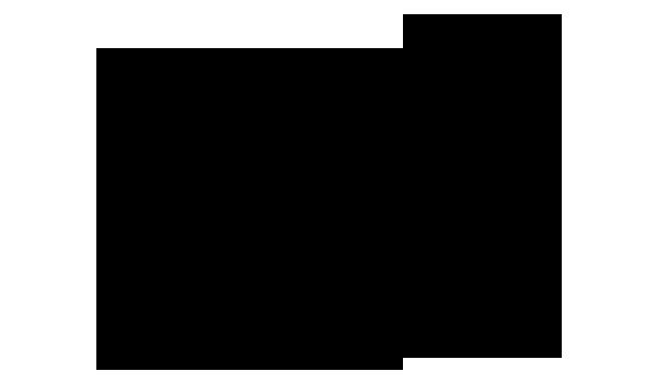 ノジギク 化学構造式2