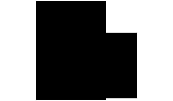 ボリジ 化学構造式1