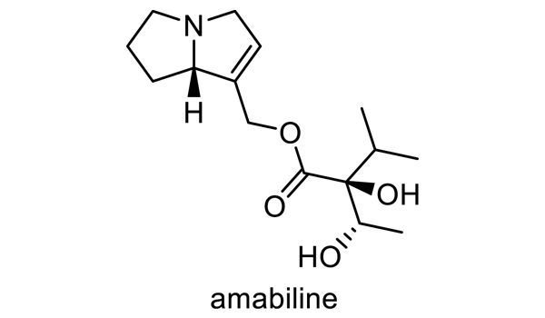 ボリジ 化学構造式2
