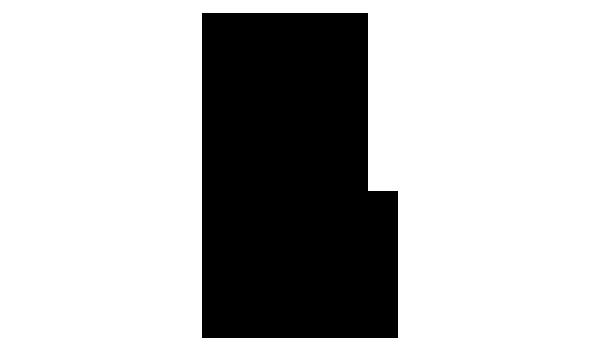 ボリジ 化学構造式3