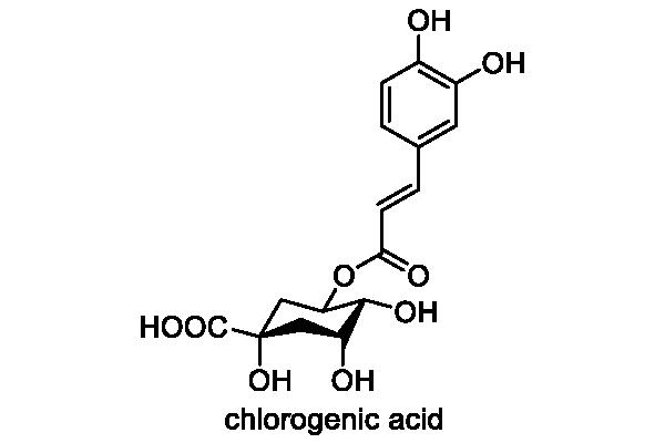 アカウキクサ 化学構造式3