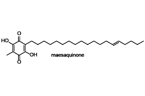 イズセンリョウ 化学構造式1