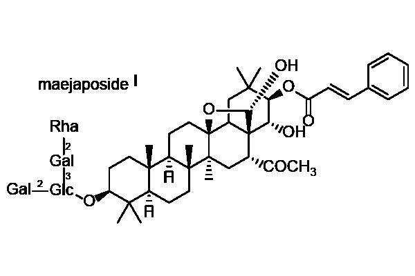 イズセンリョウ 化学構造式2