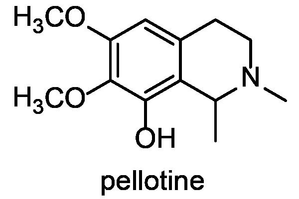 ウバタマ 化学構造式2