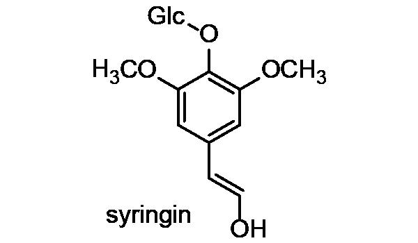 エゾウコギ 化学構造式3
