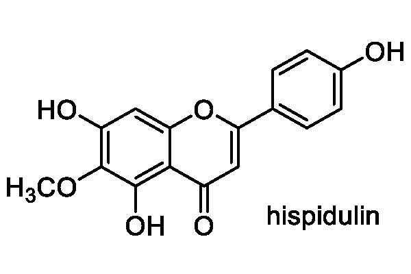 オオホシクサ 化学構造式2