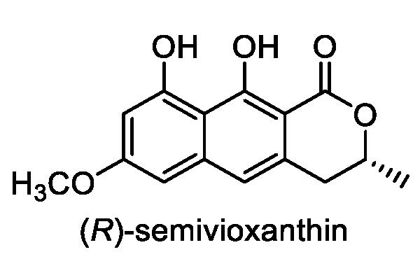 オオホシクサ 化学構造式3