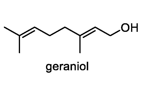 ケナシイヌゴマ 化学構造式3