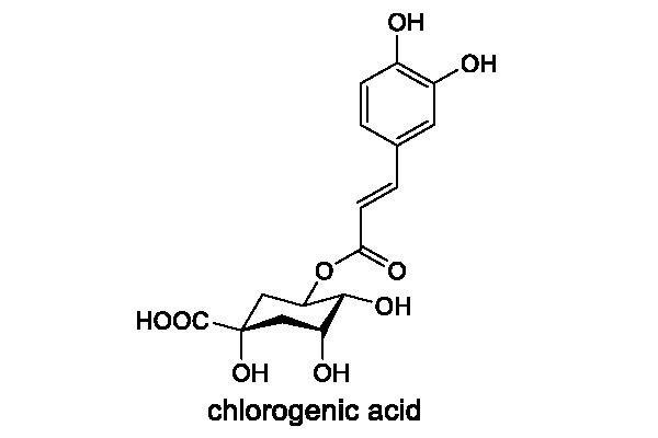 コーヒーノキ 化学構造式3