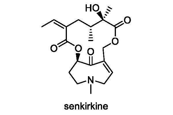 サワオグルマ 化学構造式1