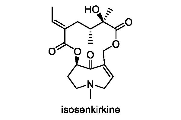 サワオグルマ 化学構造式2