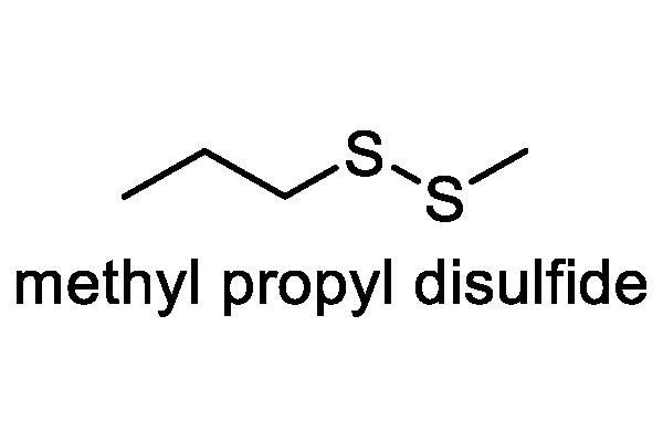 タマネギ 化学構造式1