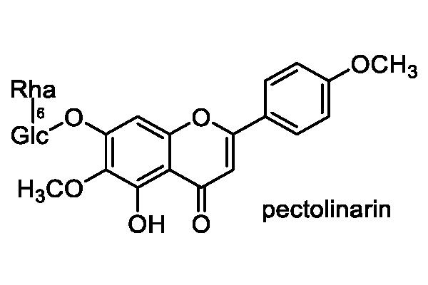 ノアザミ 化学構造式1