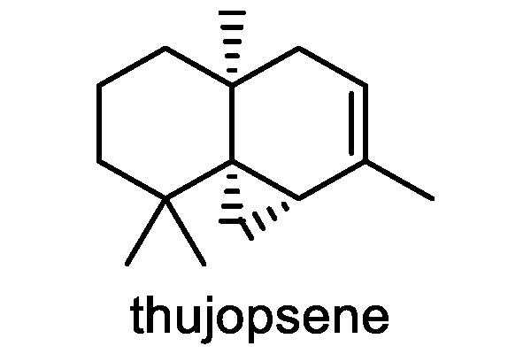 ノアザミ 化学構造式2