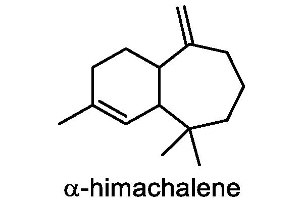 ノアザミ 化学構造式3