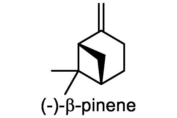 ハナミョウガ 化学構造式3