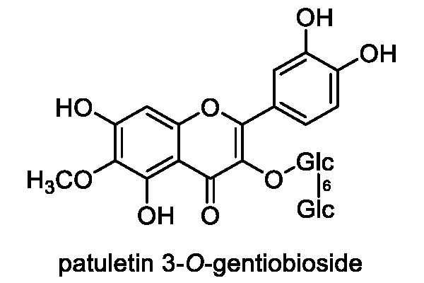 ホシクサ 化学構造式1