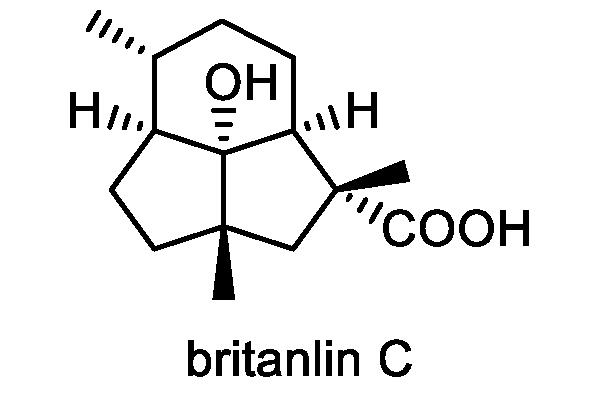 ホソバオグルマ 化学構造式2
