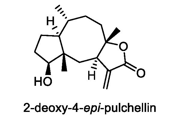 ホソバオグルマ 化学構造式3