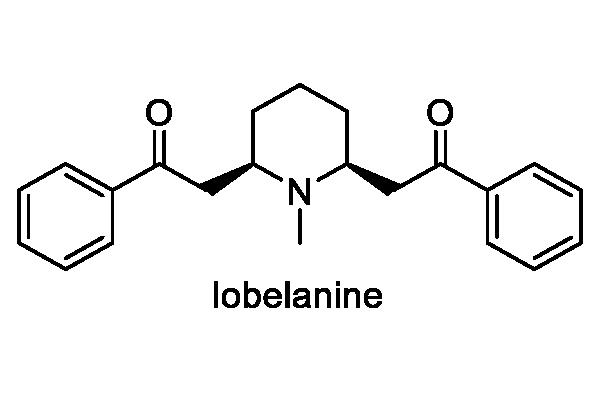 ミゾカクシ 化学構造式2